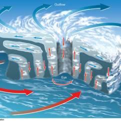 Diagram Of A Tornado Forming Segmented Worm Vertical Cross Section The Hurricane Circulation