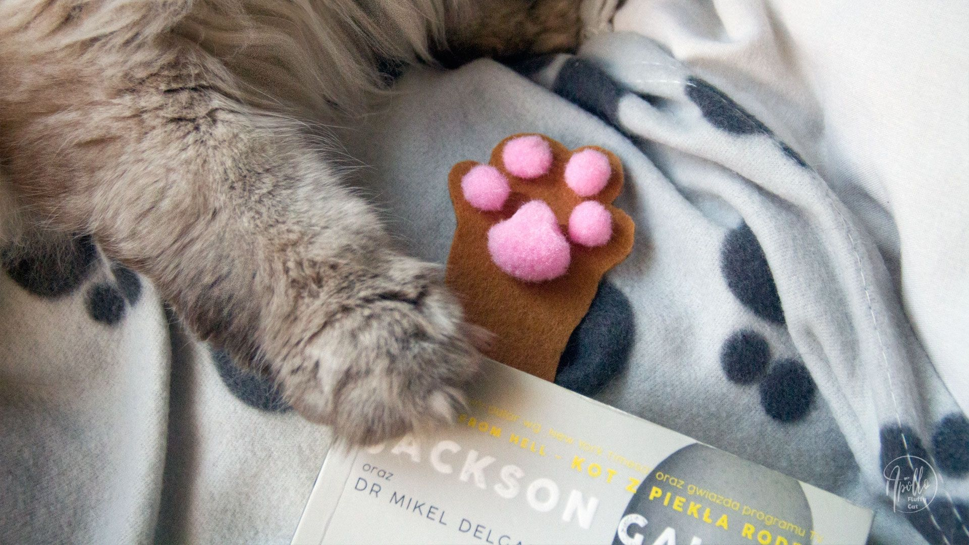 How to make a felt 3D cat's paw bookmark
