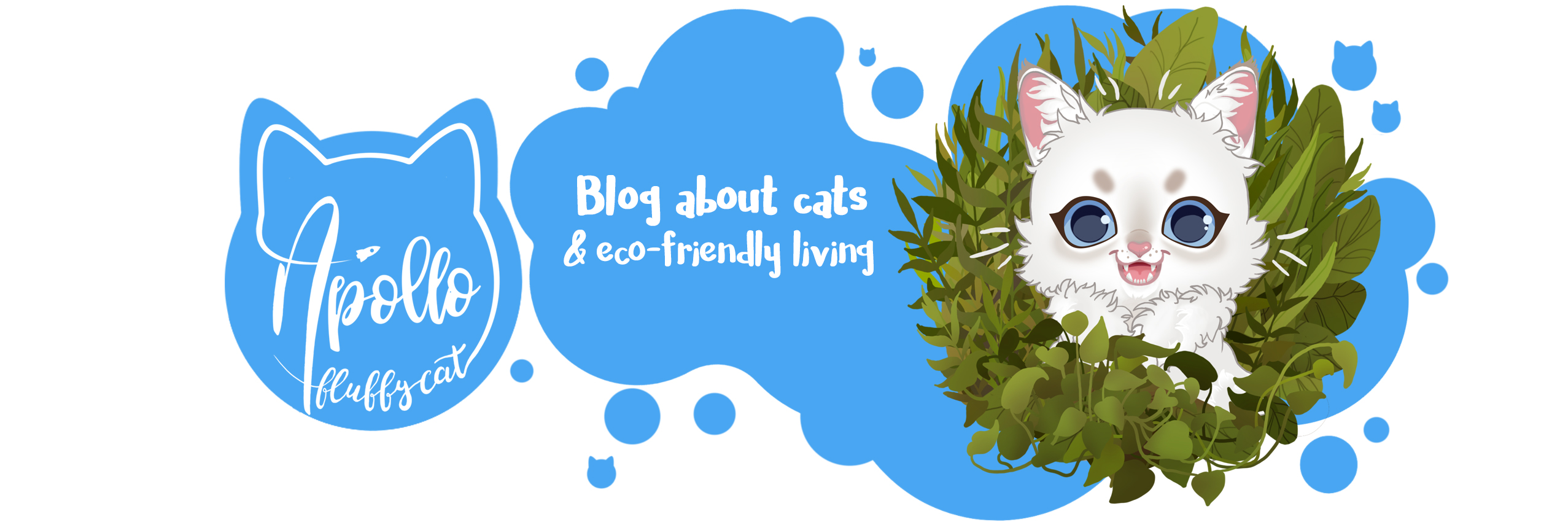 Apollo Fluffy Cat | Blog about cats and eco-friendly living