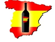 Explore Spanish Wines
