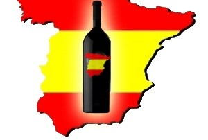 Explore Spanish Wines