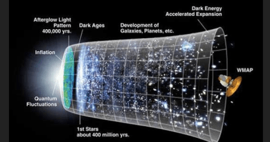 The Engineering Marvel of the Universe
