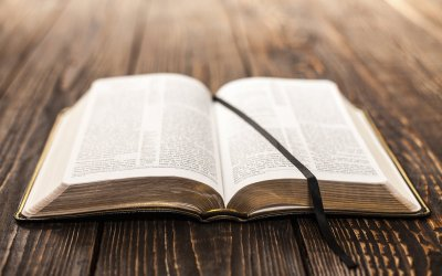 Undesigned Coincidences and the Reliability of Scripture