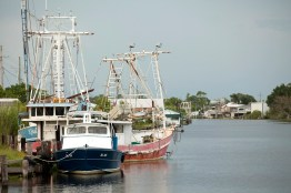 The bayou of Chauvin, Louisiana.