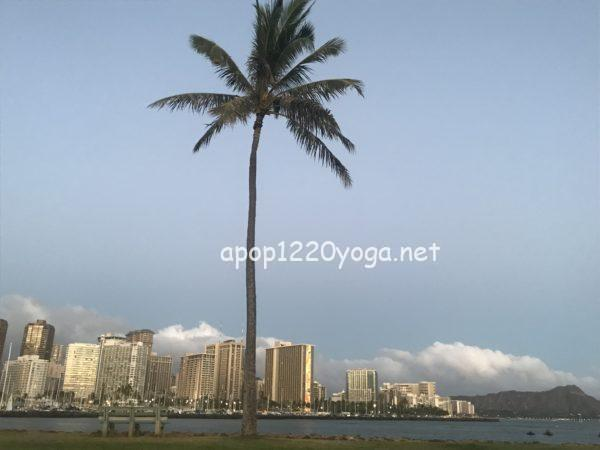 ハワイ到着日