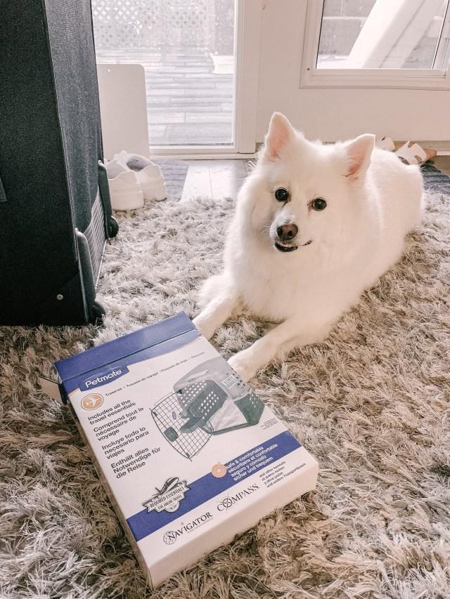 Petmate Travel kit and dog