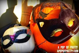No Carve Pumpkin Ideas - cat mask