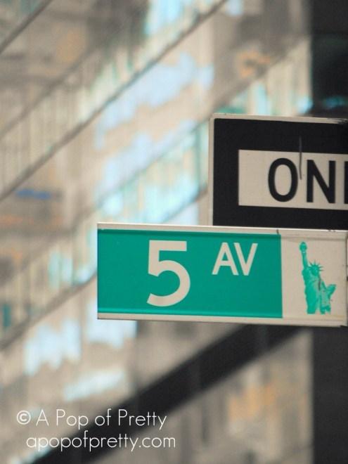 New YorkDSC_1539