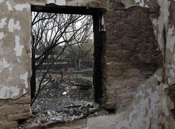 Пожар под Чернобылем: опубликованы фото