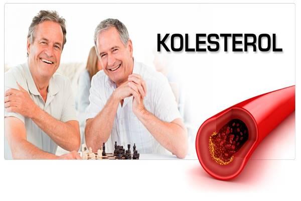 penyakit kolesterol tinggi gejala tanda pengobatan dan pencegahan