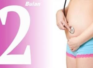 hamil 2 bulan bentuk perkembangan janin yang sehat dan normal