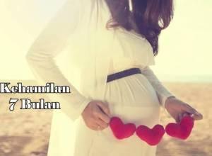 hamil 7 bulan ciri ciri janin yang sehat dan normal