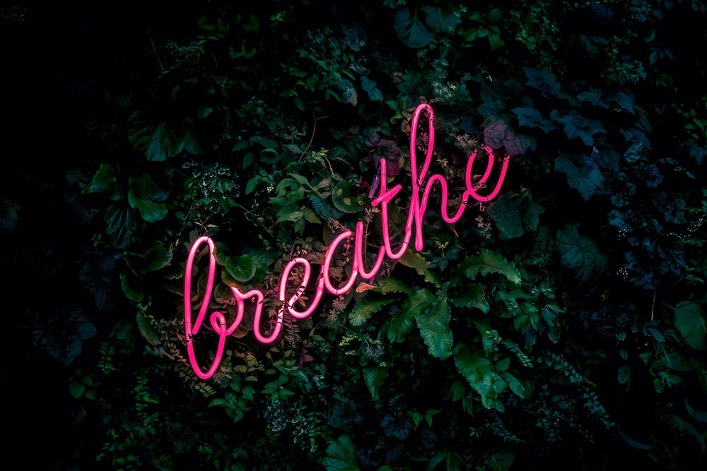 """A neon pink """"breathe"""" sign against a leafy green background"""