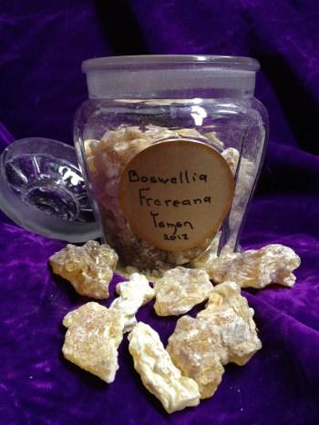 Frankincense. Boswellia Frereana. Yemen