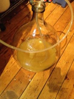 dandelion Wine to secondary fermentation