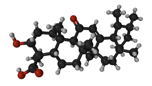 Boswellia Frankincense Rivae. common Frankincense molecules. model of 11-keto-β-Boswellic Acid
