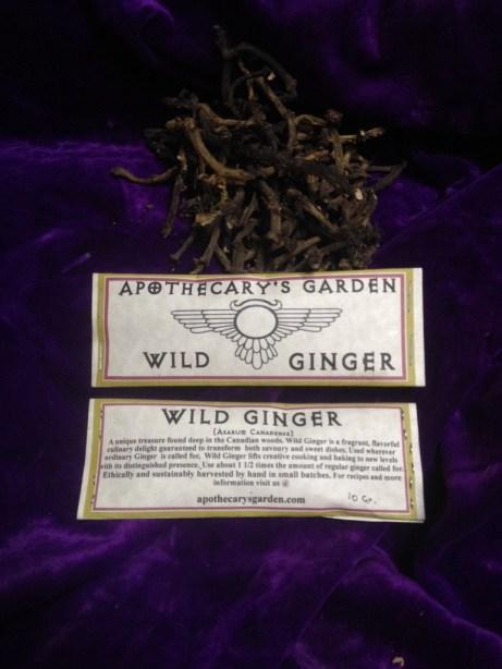 Wild Ginger-10 gram samplers