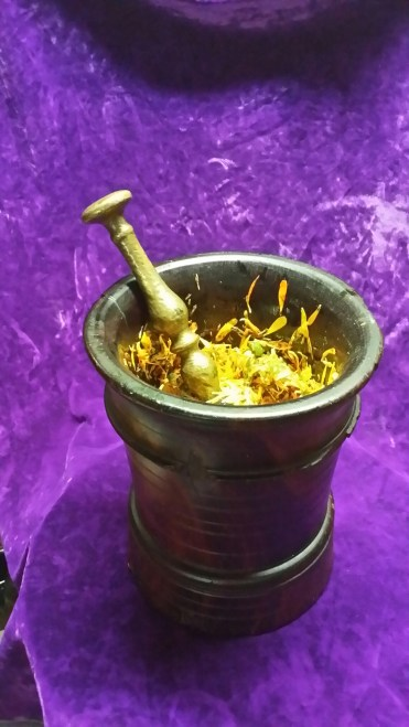 Preparing Calendula flowers for medicine with mortar and pestle.