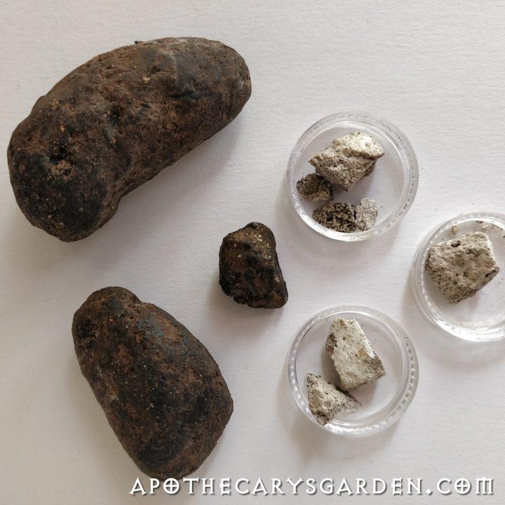 Ambergris, whale vomit, musk, Aphrodisiac, www.apothecarysgarden.shop