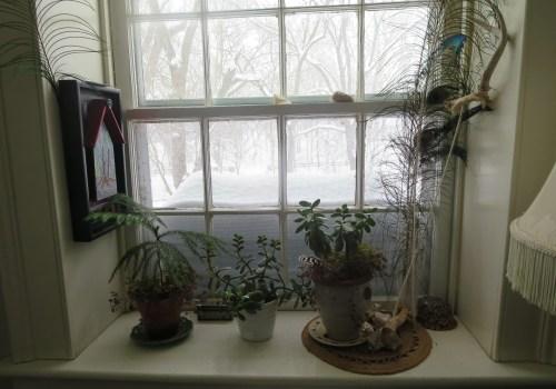 Snowed in kitchen window.