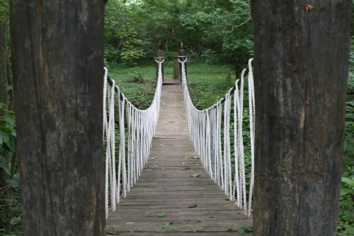 Walking Bridge