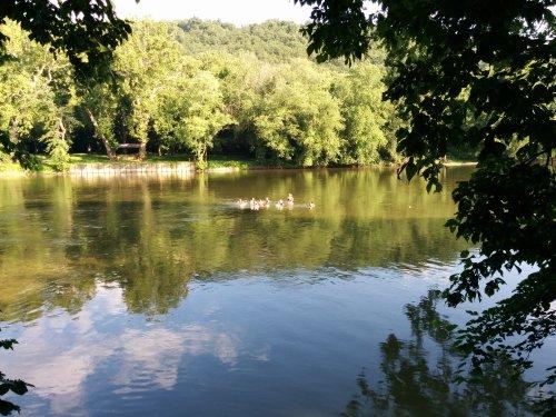 The summer solstice river pod