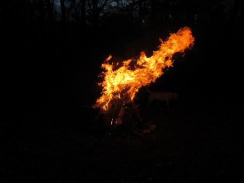 lil fire