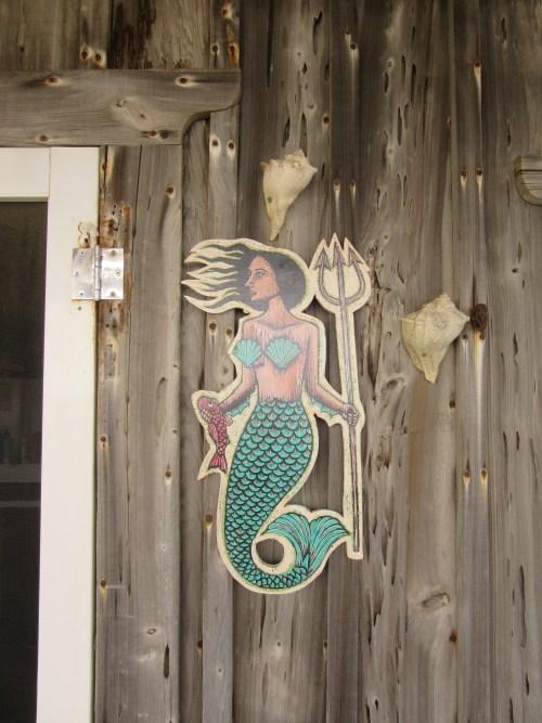 Mermaid by Neil Stavley