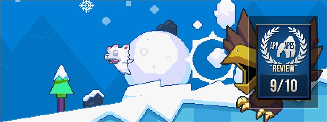 Roller Polar Review