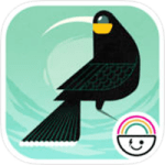 12 Huia Birds Review