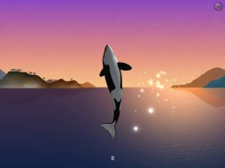i-am-dolphin_903959279_ipad_02.jpg