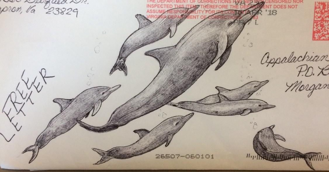 dolphins!!!!.jpg