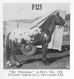 sirthomasf123