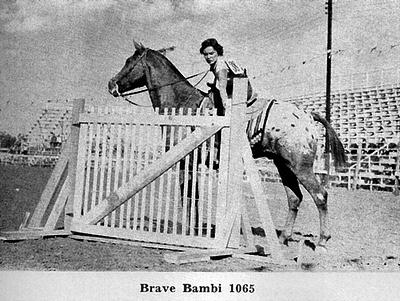 brave bambif1065