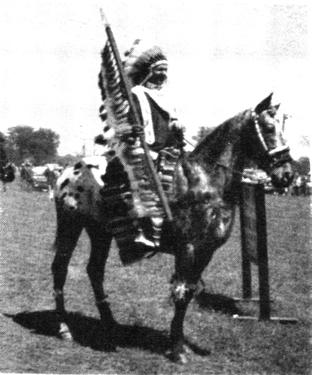 cobmoosa chief t28