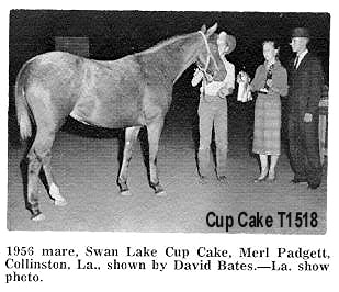 cupcaket1518