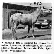 jimmyboyt992