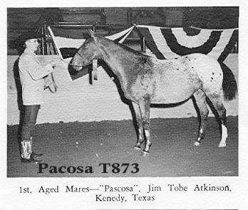 pacosat873
