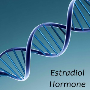 Estradiol Hormone Imbalance Symptoms; Men and Women Sexual Health.