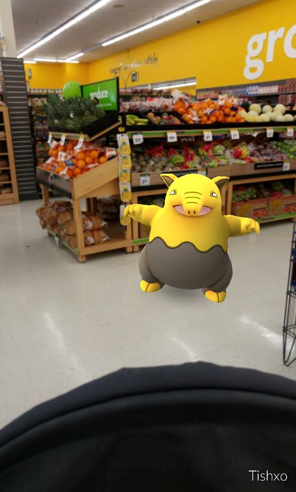 pokemon go 004