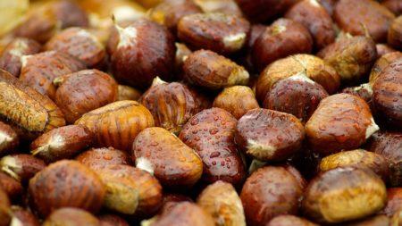 visite montelimar creme marrons