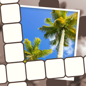 Picture Perfect Crossword Chapter 34 Answers