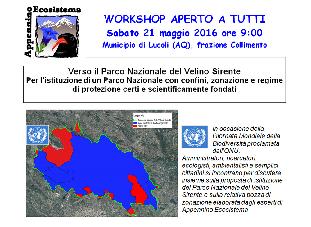 Workshop-Lucoli
