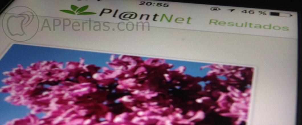 PlantNet 1