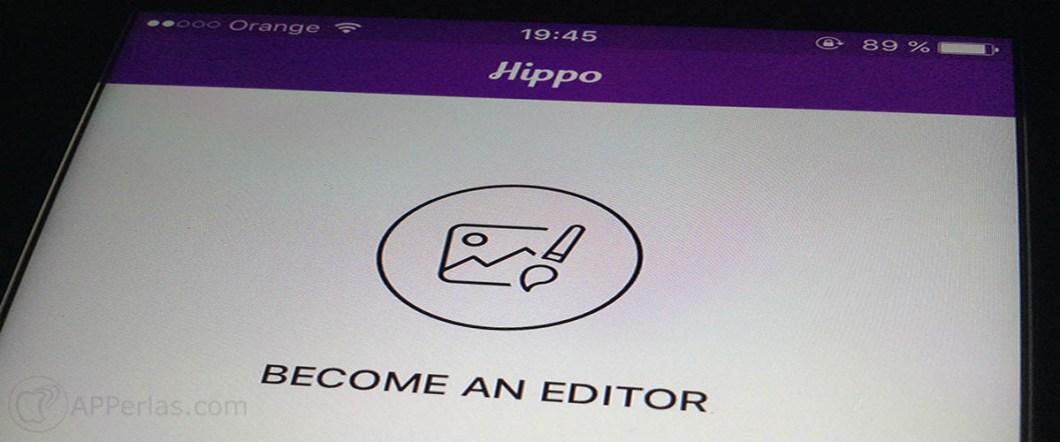 Hippo Pics 1