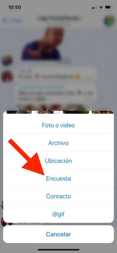 Opción encuestas de Telegram