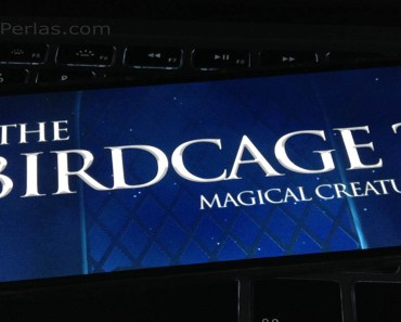 The Birdcage 2, la secuela del juego para dispositivos iOS