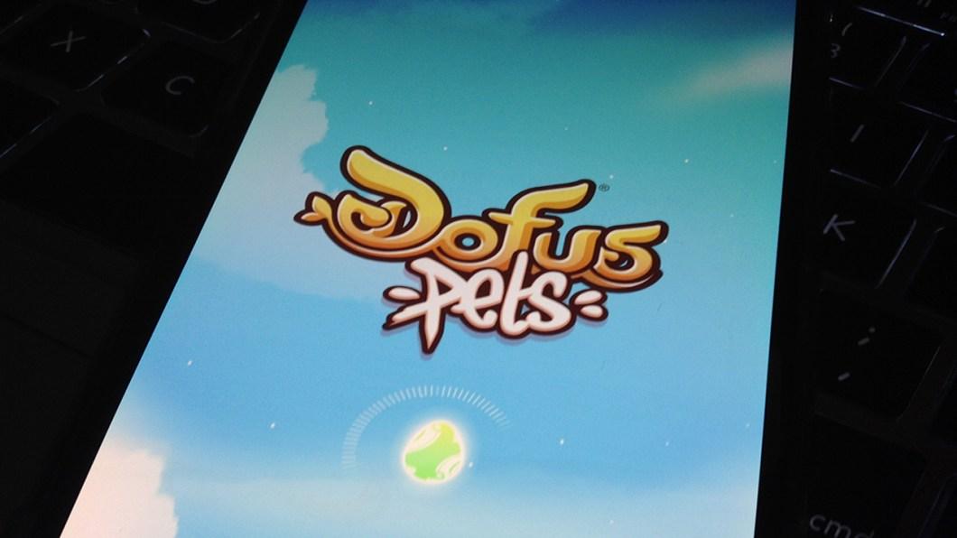 dofus pets 1
