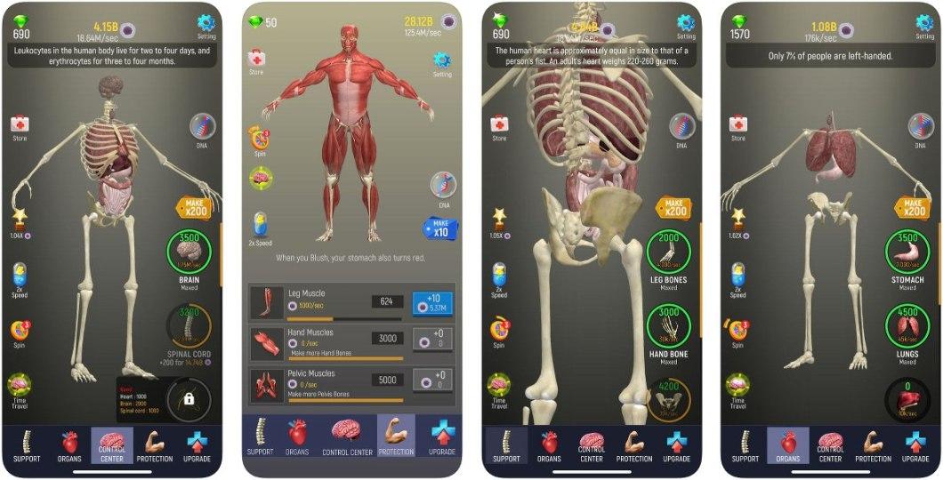 Juego del cuerpo humano para iOS