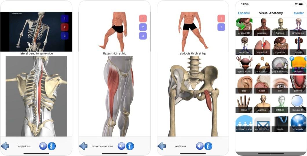 App de anatomía